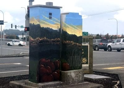 Painted Utility Boxes